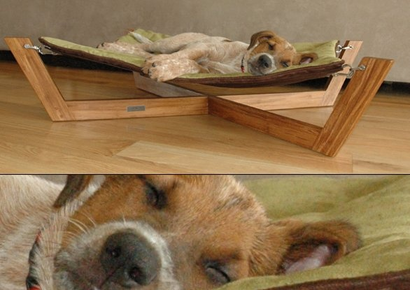 Dog Beds And Crates Phone Number