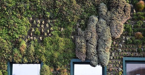 In Italia il giardino verticale più grande del mondo