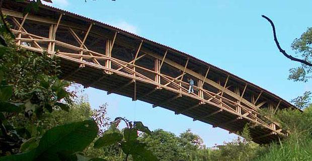 Materiali-vegetali-architettura-guadua-bridge