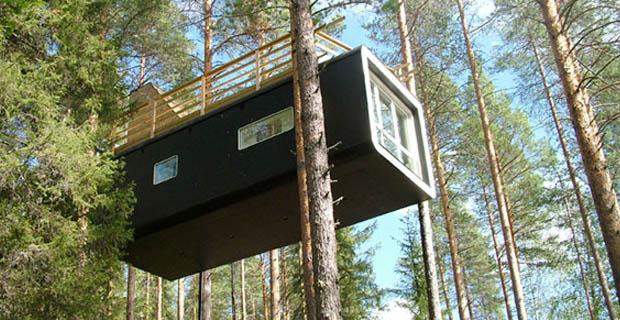 Case sugli alberi un albergo con le camere sospese tra i for Case in legno sugli alberi