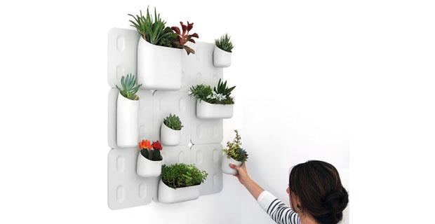Il giardino verticale magnetico