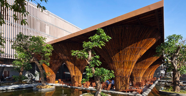 bar-foresta-bambu-a