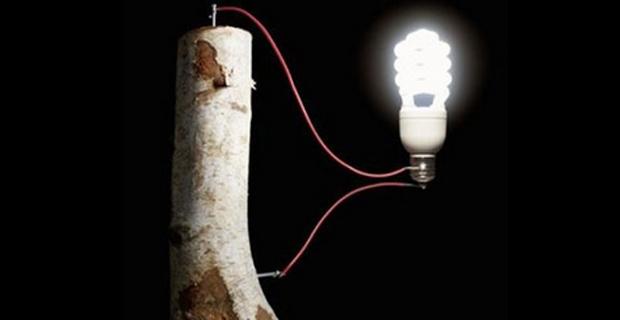 batteria-ecologica-legno-a