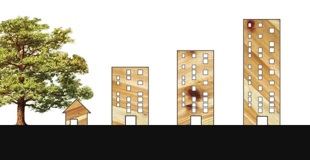 grattacieli-legno-a