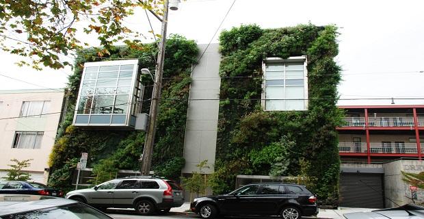 muro-vegetale-c