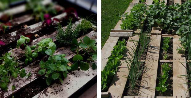 Come creare un orto e una panca per esterni con i pallet