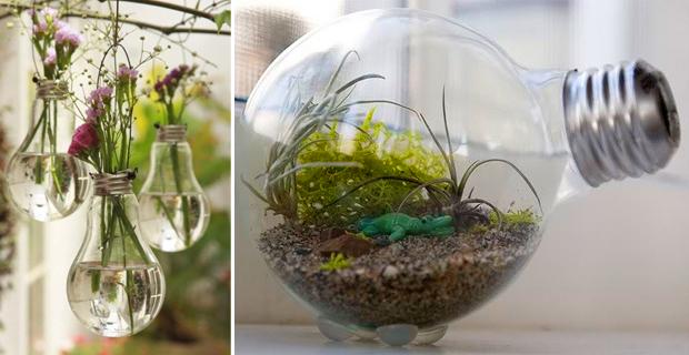 riciclo lampadine realizzare un mini terrario