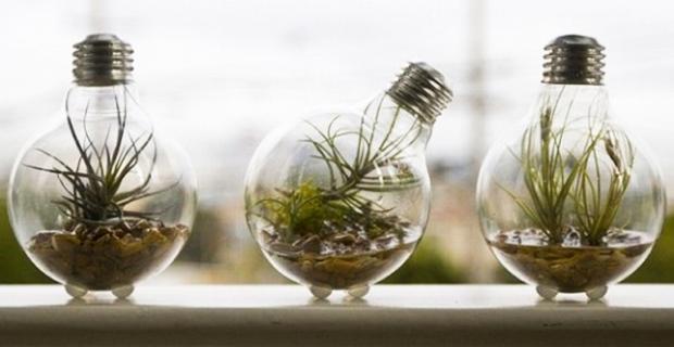 riciclo creativo delle lampadine, parte 2 - casadellelampadine - Lampade Riciclo Creativo