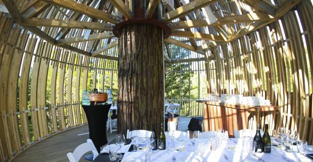 Un ristorante sull albero ispirato al bozzolo della crisalide for Casa sull albero firenze