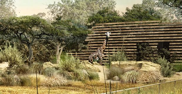 zoo-europei-animali-a