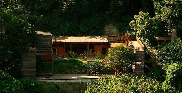 architettura-organica-taipei-a
