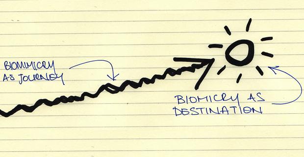 biomimetica-design-a