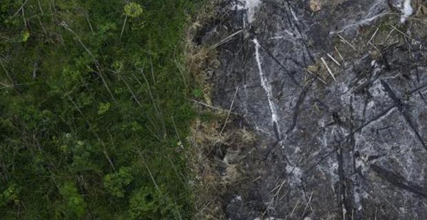 deforestazione-amazzonia-a