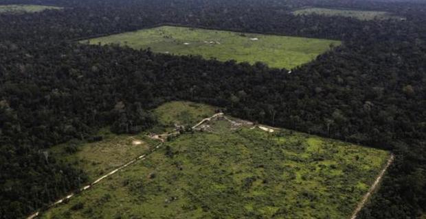 deforestazione-amazzonia-a1