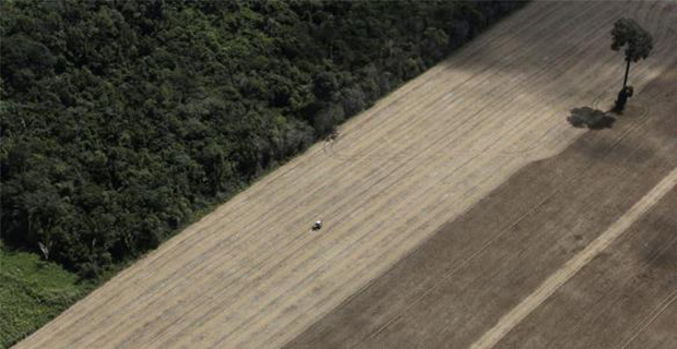 deforestazione-amazzonia-b
