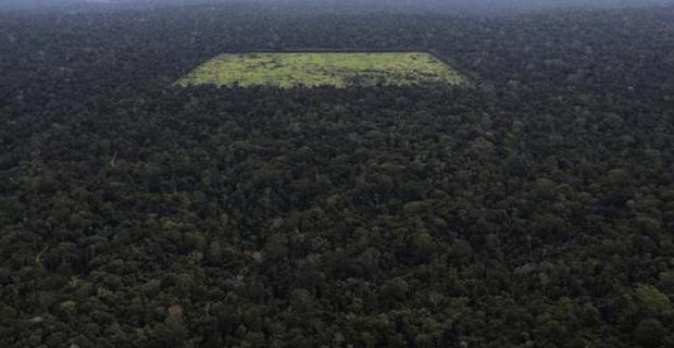 deforestazione-amazzonia-f