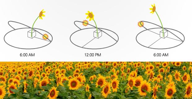 fotovoltaico-concentrazione-integrato-d