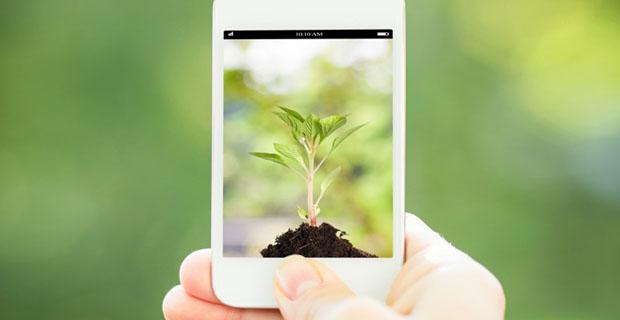 green-app-ambiente-a
