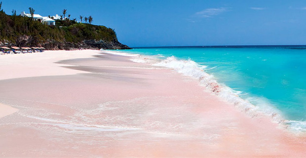 caption:La Pink Sand Beach, alle Bahamas