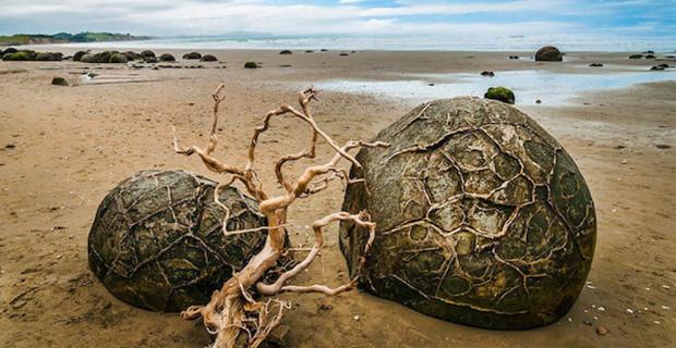 caption:La spiaggia di Koekohe in Nuova Zelanda
