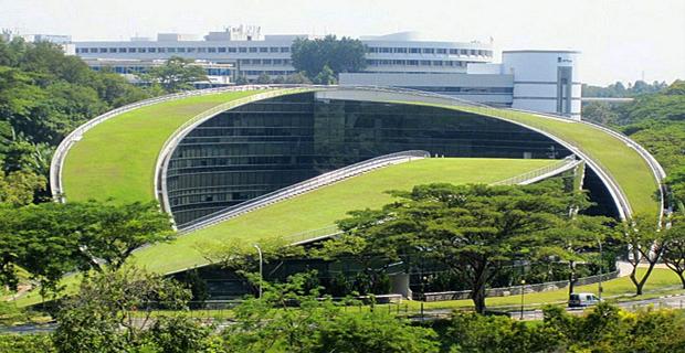 tetto-verde-singapore-a