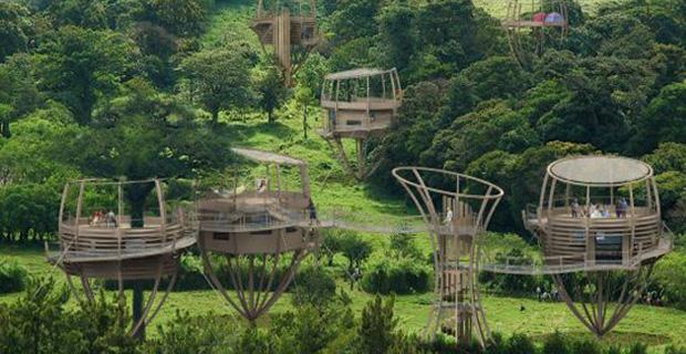 Tree houses le 50 case sugli alberi pi belle al mondo for Ad le case piu belle del mondo