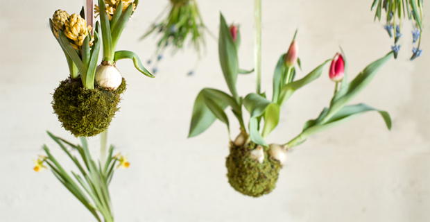 Giardini sospesi 5 idee originali per arredare con il verde for Vasi sospesi