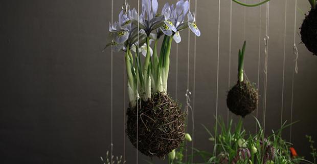 Piante Da Esterno : Giardini sospesi idee originali per arredare con il verde