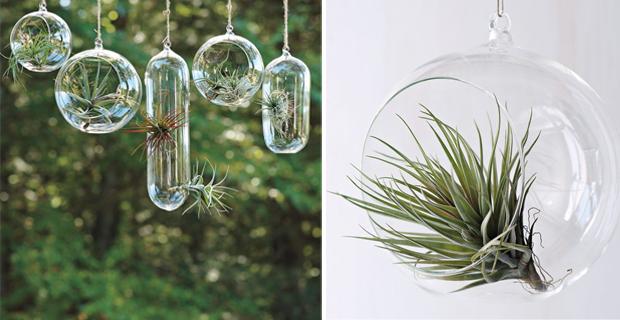 Giardini sospesi 5 idee originali per arredare con il verde - Giardini zen da interno ...
