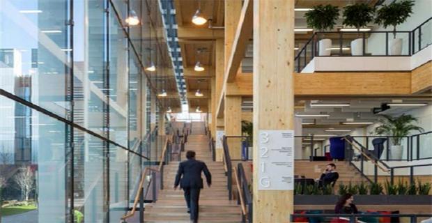 arup-edificio-legno-c