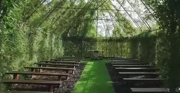 chiese-alberi-f