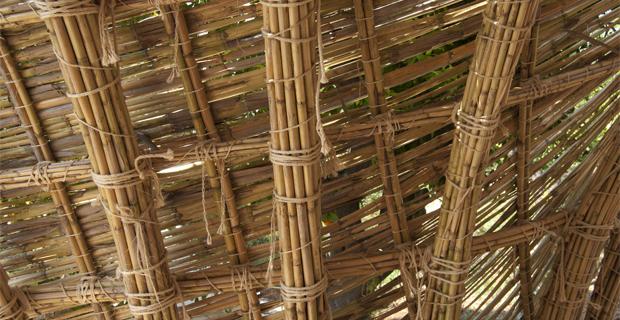 Costruire con le canne di bamb un metodo a km zero for Pergolato con canne di bambu