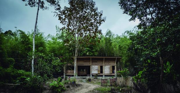 convento-house-bamboo-b