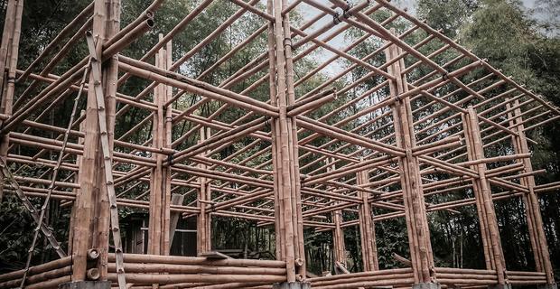 convento-house-bamboo-c