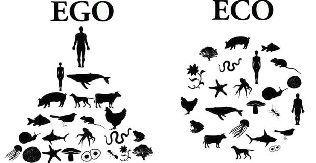 caption: La dieta vegan rispetta tutte le specie, trattando tutti gli esseri viventi come pari con egual diritti.