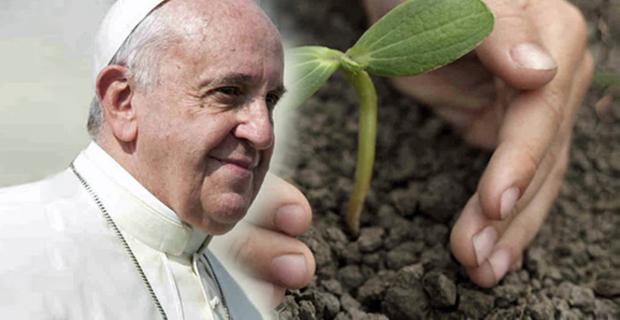 enciclica-ambiente-papa-c