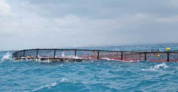 caption: Deformazione di una gabbia per piscicoltura indotta dalle onde. Foto tratta dal sito del progetto di ricerca Mermaid.