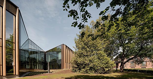 foresta-museo-finlandia-b