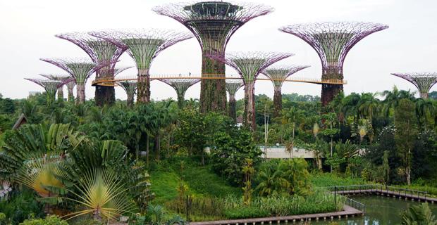 gardens-bay-singapore-c