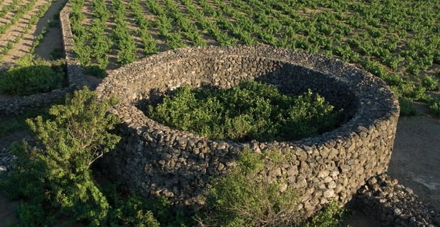 Case Di Pietra Pantelleria : Bilocali in vendita a pantelleria tp trovacasa