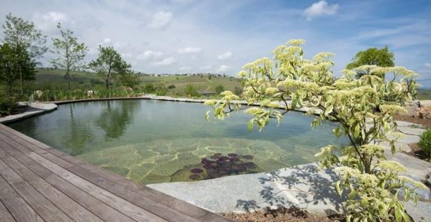 Come realizzare un biolago una piscina fitodepurata e for Laghetto balneabile progetto