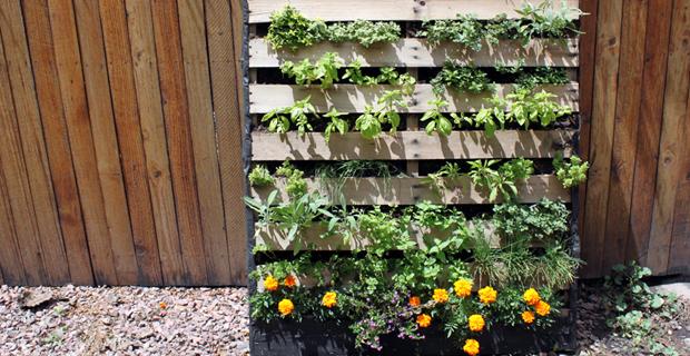 5 soluzioni creative per sfruttare al meglio il giardino in citt - Come realizzare un giardino verticale ...