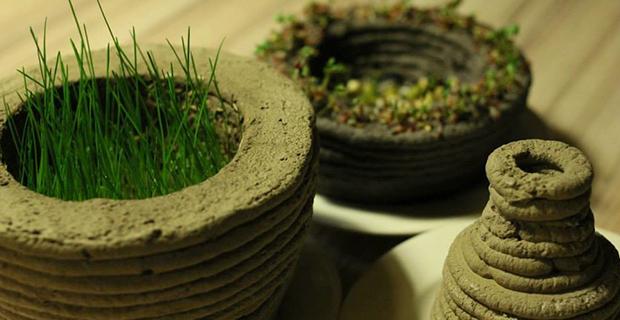 stampanti-3d-piante-c
