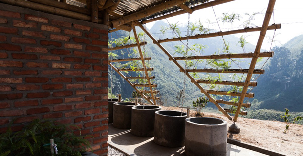 toigetation-bambu-hanoi-b