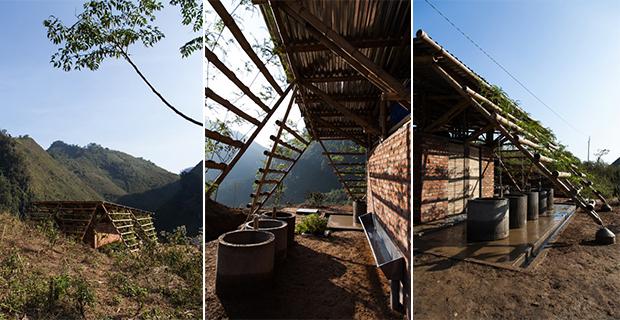 toigetation-bambu-hanoi-c