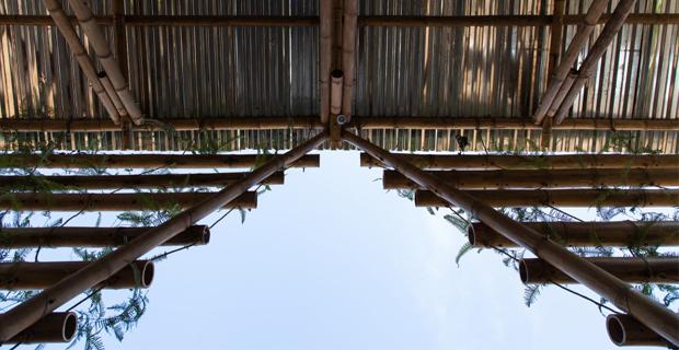 toigetation-bambu-hanoi-m