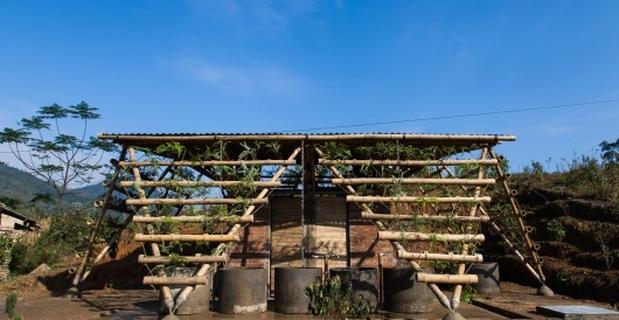 toigetation-bambu-hanoi-o