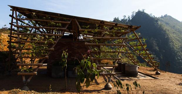toigetation-bambu-hanoi-q