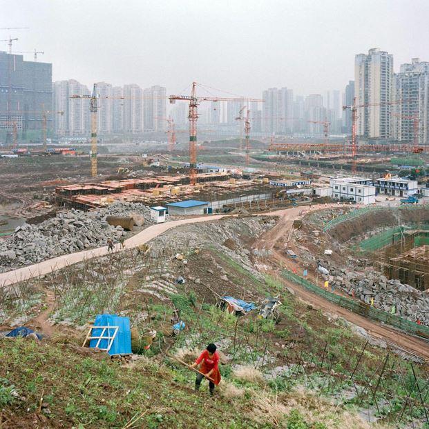 urban-farming-cina-f