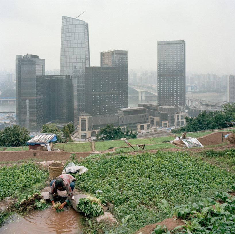 urban-farming-cina-g